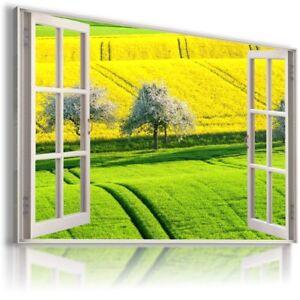 GREEN ROAD FIELD GRAIN  3D Window View Canvas Wall Art Picture  W64 MATAGA
