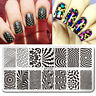 BORN PRETTY Nail Art Stamp Plate Manicure Image Template Wave Net Theme BP-L050