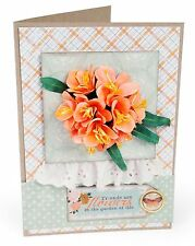 Sizzix Thinlits Clivia Flower 5pk #658856 Retail $19.99 Retired, SO LOVELY