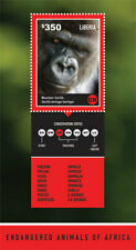 Liberia 2014 ENDANGERED ANIMALS OF AFRICA  MOUNTAIN GORILLA Souvenir Sheet - MNH