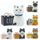 Blind Box Siamese Black White Orange Tabby Cat Bag Mini Figure 1 Random Toy