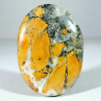 Rare Indonesian Maligano Jasper Pair Loose Stone Cabochons Gemstone For Earring 23x13x5MM 26Ct.