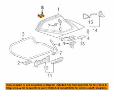 Liftgate tailgate hinge Chevrolet Corvette 2006 - 2011 GM FEO 20986700 B12 B14