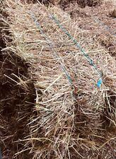 Good hay, small bales, organically grown