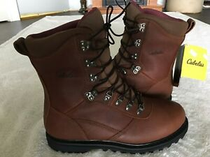 Cabela's Iron Ridge 800G Gore-Tex Insulated Hunting Boots size 10.5 EE