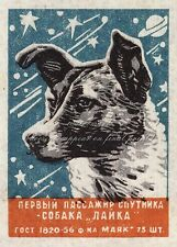 Soviet Space Poster Canvas HQ Print 8x10+1'' Border SPACE DOG LAIKA SPUTNIK