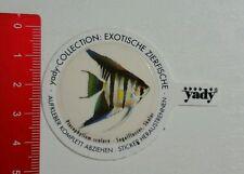 Aufkleber/Sticker: yady - Pterophyllum scalare Segelflosser Skalar (260816147)