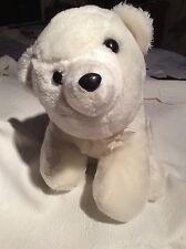 Polar bear Cuddly toy