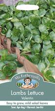 Mr. Fothergill's Lettuce Vegetable Plant Seeds