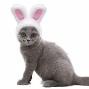Cute Costume Bunny Rabbit Hat with Ears for Cats & Small Dogs Party Costume AU