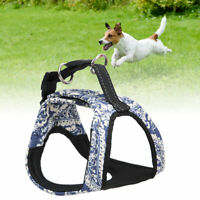 Adjustable Dog Chest Strap Belt Harness Pet Puppy Walking Collar Vest Comfort