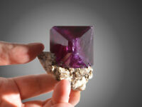 Alum Alun chrome Alunite big crystals on matrix specimen purple like fluorite