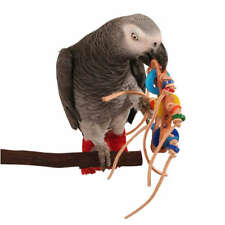 Zoo Max Rollicking Parrot Foot Toy