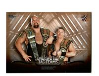 WWE Showmiz 2016 Topps Undisputed Tag Teams Parallel Card SN 19 of 99