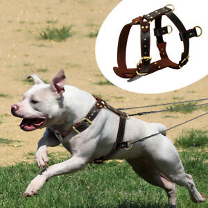 Real Genuine Leather Dog Harnesses Soft Heavy Duty Dog Vest for Pitbull Boxer