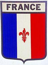 Original Vintage French Flag Iron On Transfer France