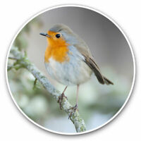 2 x Vinyl Stickers 7.5cm - Cute Winter Red Robin Bird Garden Cool Gift #24115