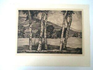 "Signed Original Etching Luigi Lucioni ""WHITE AND SHADOWS"" Tree & Hill 1950s  Z14"