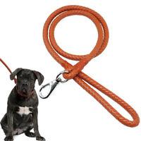 Braided PU Leather Dog Lead Heavy Duty Rope Dog Lead for Training Walking Brown