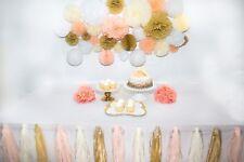 46 Pcs Tissue Paper Pom Poms Tassel Flowers Lanterns Honeycomb Party Decorations