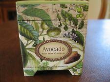 Michel Design Works Home Decor Soy Wax Candle 6.5 oz- Avocado CAN259