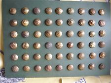 A3 Mounted display of 54 military buttons wwI, wwII others British Indian