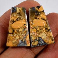 Wonder!! Pair Natural Maligano Jasper Mix Cabochon Gemstone Collection AG-300