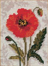 Anchor Poppy - Starters Needlepoint Tapestry Kit - MR911