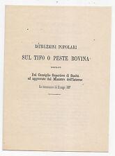 Z26-VETERINARIO-ISTRUZIONI POPOLARI SUL TIFO O PESTE BOVINA 1867
