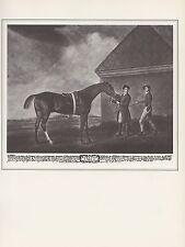 """1974 Vintage HORSES """"ECLIPSE"""" FAMOUS 1700'S RACEHORSE B&W Art Print Lithograph"""