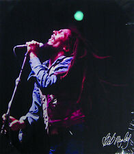 "Bob Marley Live in Concert Microphone Canvas Print Art Poster Wall Decor 19""x16"""
