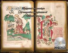 Illustrated manuscripts of vernacular paraphrases of biblical history 1450 AD