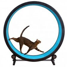 One Fast Cat Exercise Wheel!  Next shipment  in now any colour