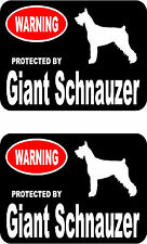 2 protected by Giant Schnauzer dog car bumper home window vinyl decals stickers