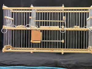 Double Trap Cage for Birds :: Balance // to Trap Softly :: Multi-Action