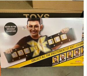 2 WWE NXT Replica Belt Youth Mattel Kids Toy Collectible Wrestling Championship