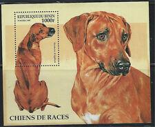 Benin SC980-985 Irish Setter-Saluki-Doberman-Boxer-SiberianHusky MNH