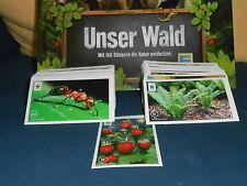 """Edeka WWF Sammelbilder 2013 """"Unser Wald"""" freie Auswahl 10 Stück"""