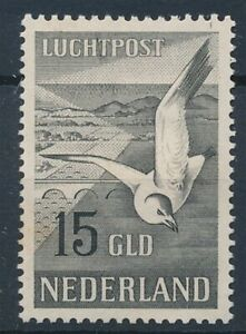 [8839] Nederland 1951 airmail bird stamp very fine MH val $230. Rusted spot