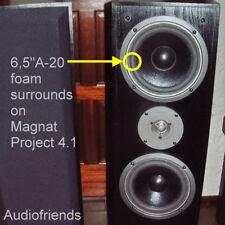 Schaumstoff Sicken Magnat Project 4.1, W165P470G, W165P870, usw. - 2 Stück