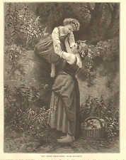 Children, Raid On The Orchard, Fruit, Farm Scene, Vintage 1874 Antique Art Print