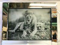 Lion Mirrored Silver Glitter Picture