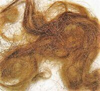 WOOLLY MAMMOTH REAL FUR HAIR WOOLY PERMAFROST BONE RUSSIAN WOOL MASTODON EXTINCT