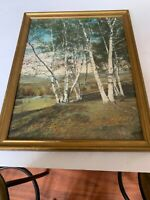 Charles Sawyer hand colored photo Pownal Valley Birch trees Maine
