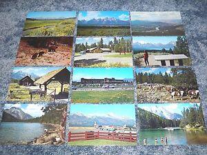 Lot of 12 Grand Teton National Park Wyoming Postcards Mountains Lakes - Postcard