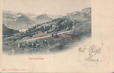 AK, Foto, Rigi-Scheidegg - Schweiz, 1904; 5026-42