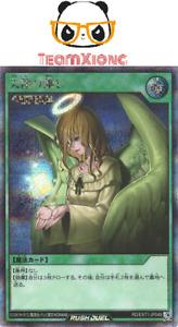 YuGiOh Rush Duel RD/EXT1-JP049 Secret Rare Graceful Charity Japanese