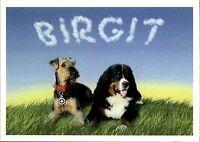 """Reklame Werbung Motiv-AK mit Namenszug """"Birgit"""" und 2 Hunden Hund Dog Postakrte"""