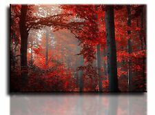 "Large Wall Art Canvas Picture Print of Red Autumn Framed 20""x30"""