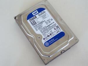 250GB 7200RPM Western Digital Blue SATAIII Desktop Hard Drive WD2500AAKX-75U6AA0